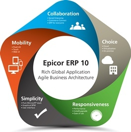 Costs and Options Epicor 10