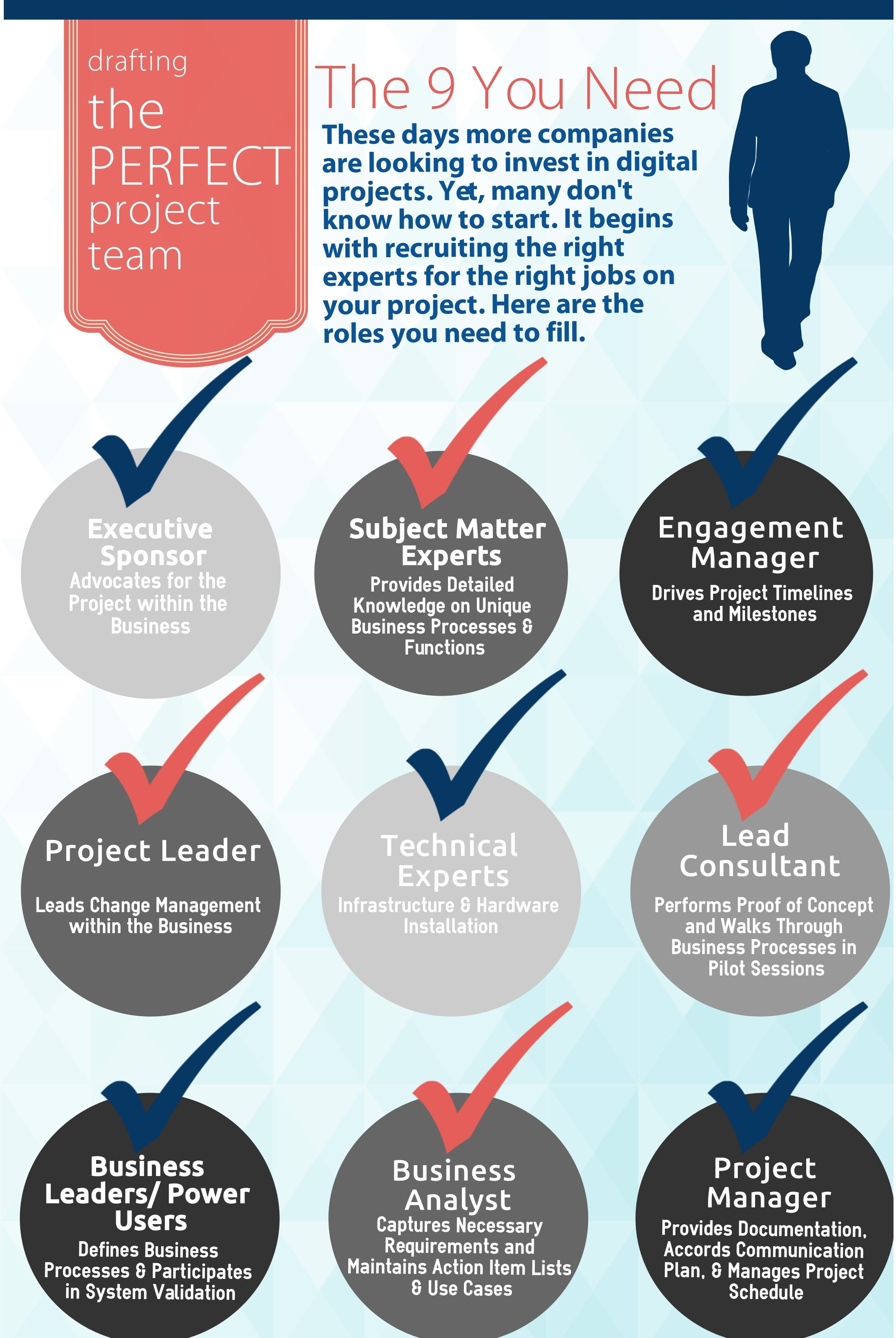 Project Team Roles