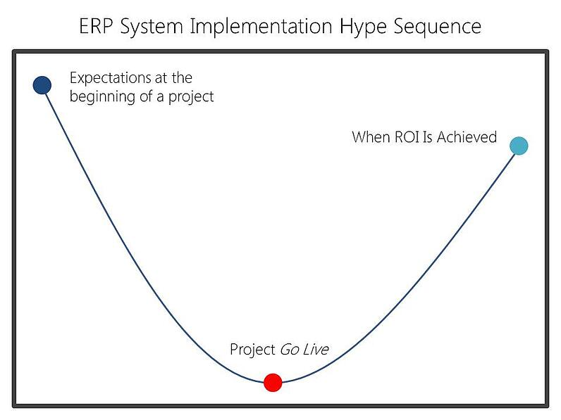 erp system implementation hype sequence