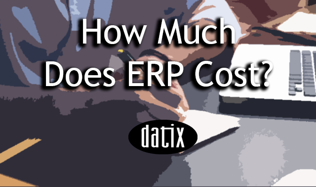 how much does ERP cost