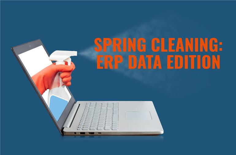 Spring Cleaning ERP Data