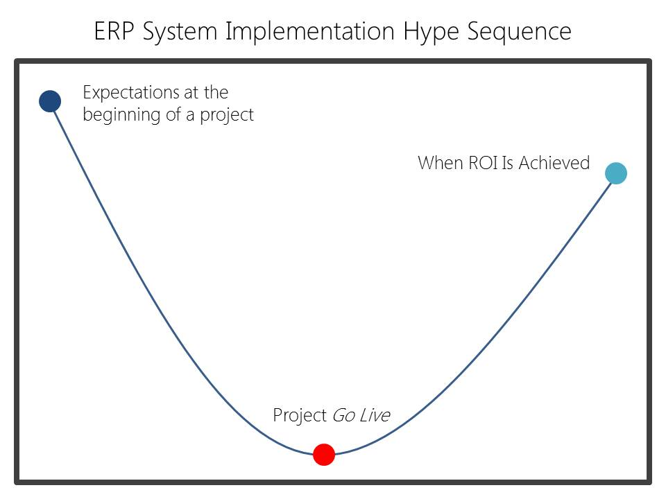 The ERP System Implementation Hype Sequence