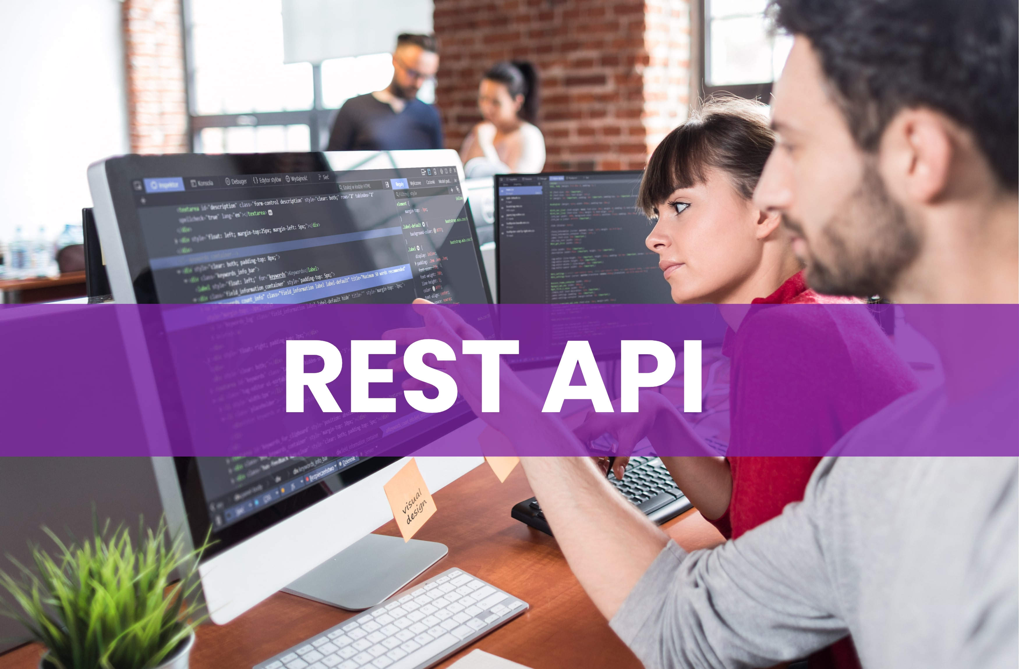 Everything You Need to Know about REST API