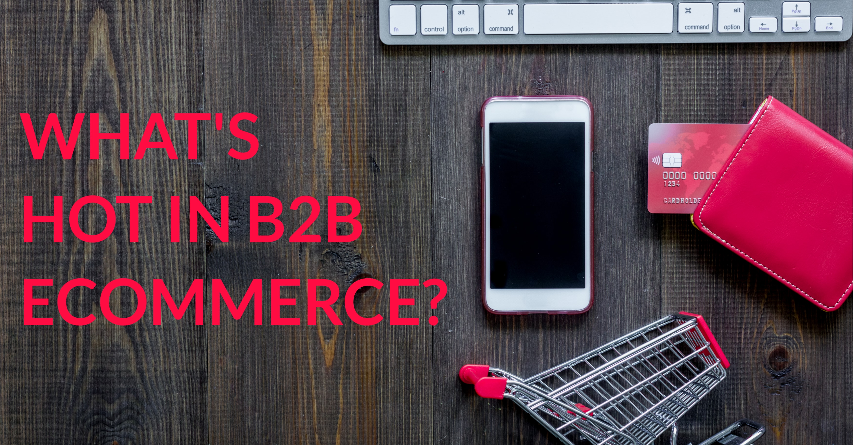 What's Hot in B2B eCommerce?
