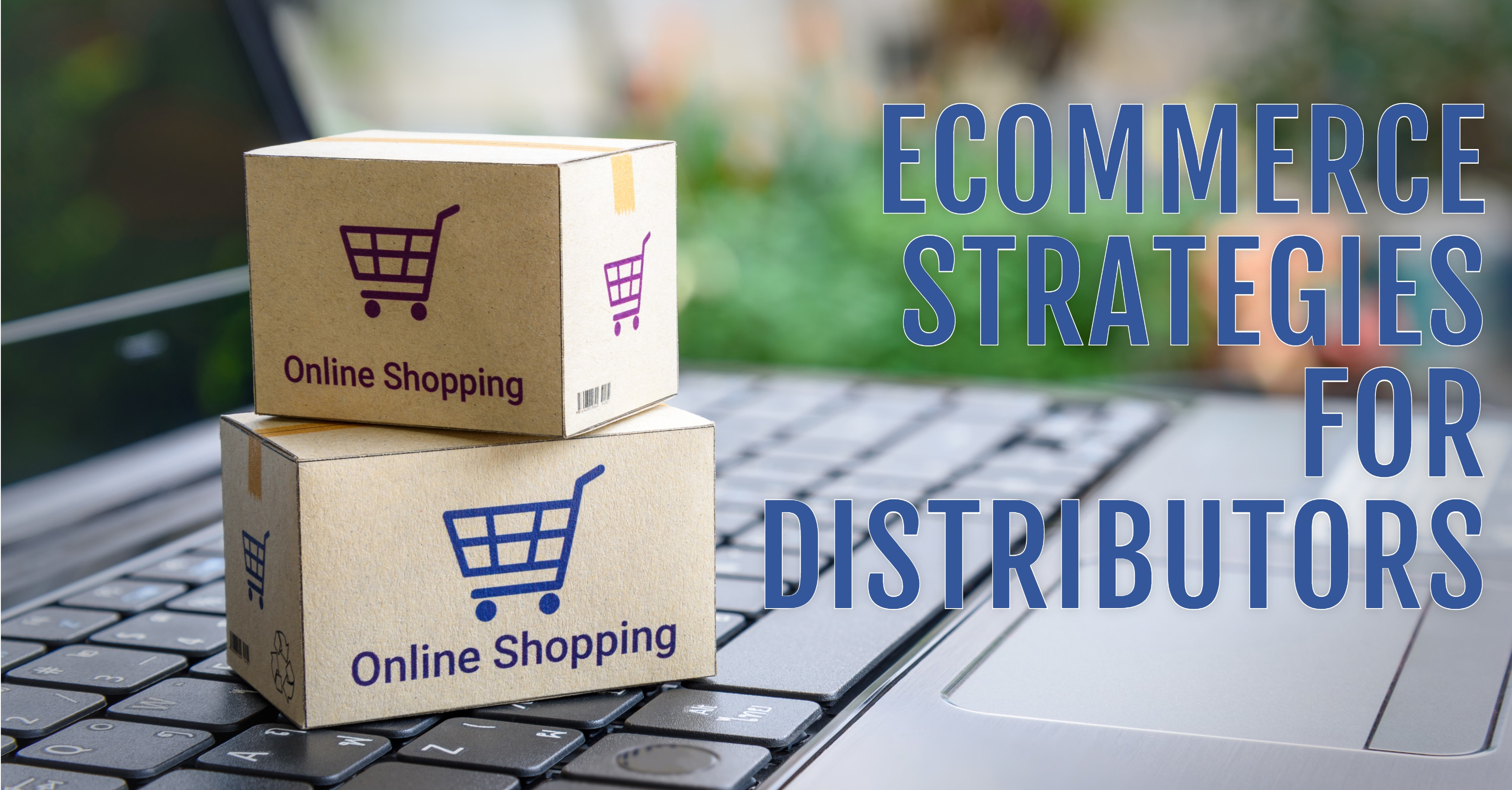 Distributors Must Adopt eCommerce Strategies