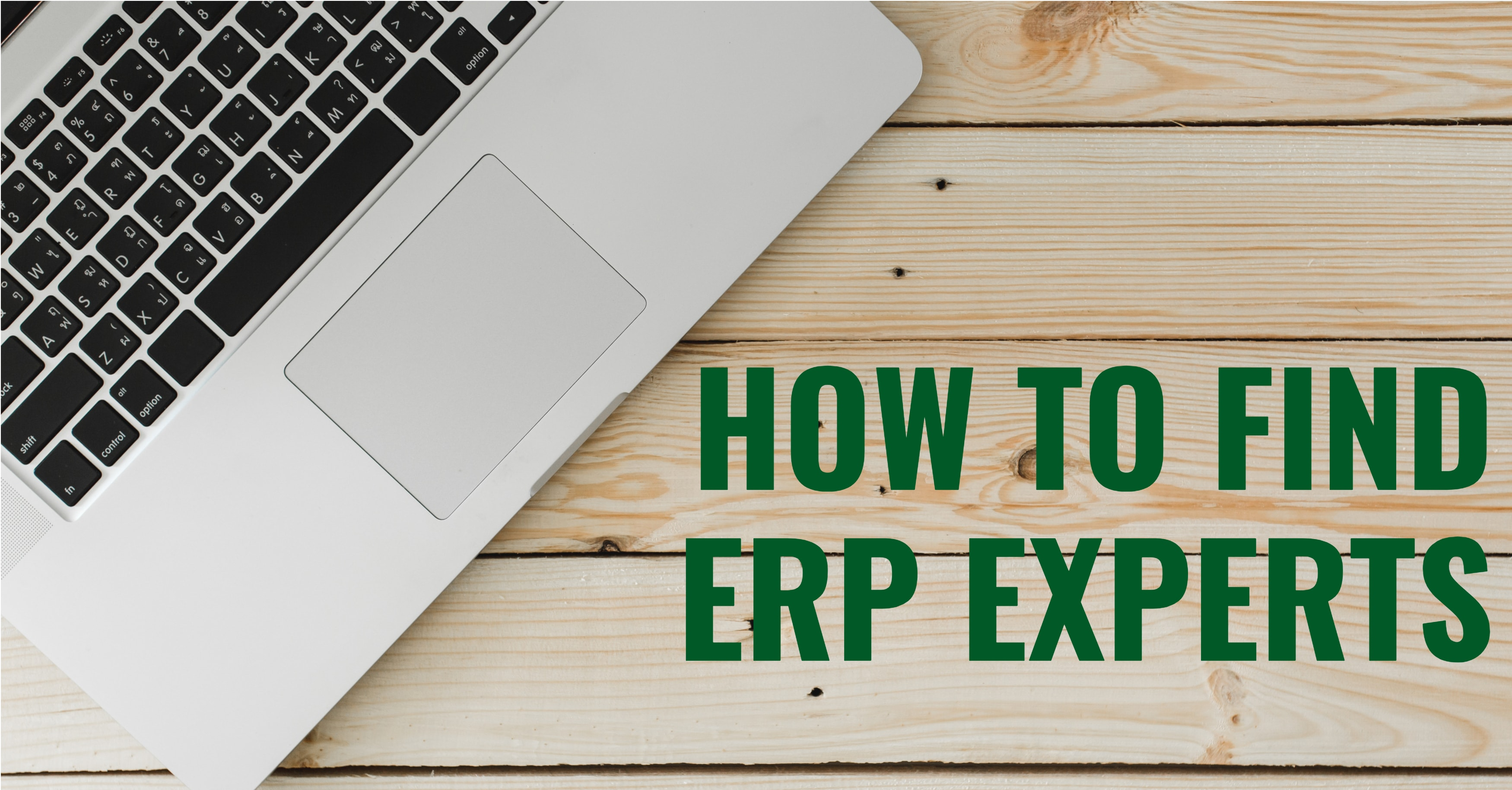 How to Find ERP Experts