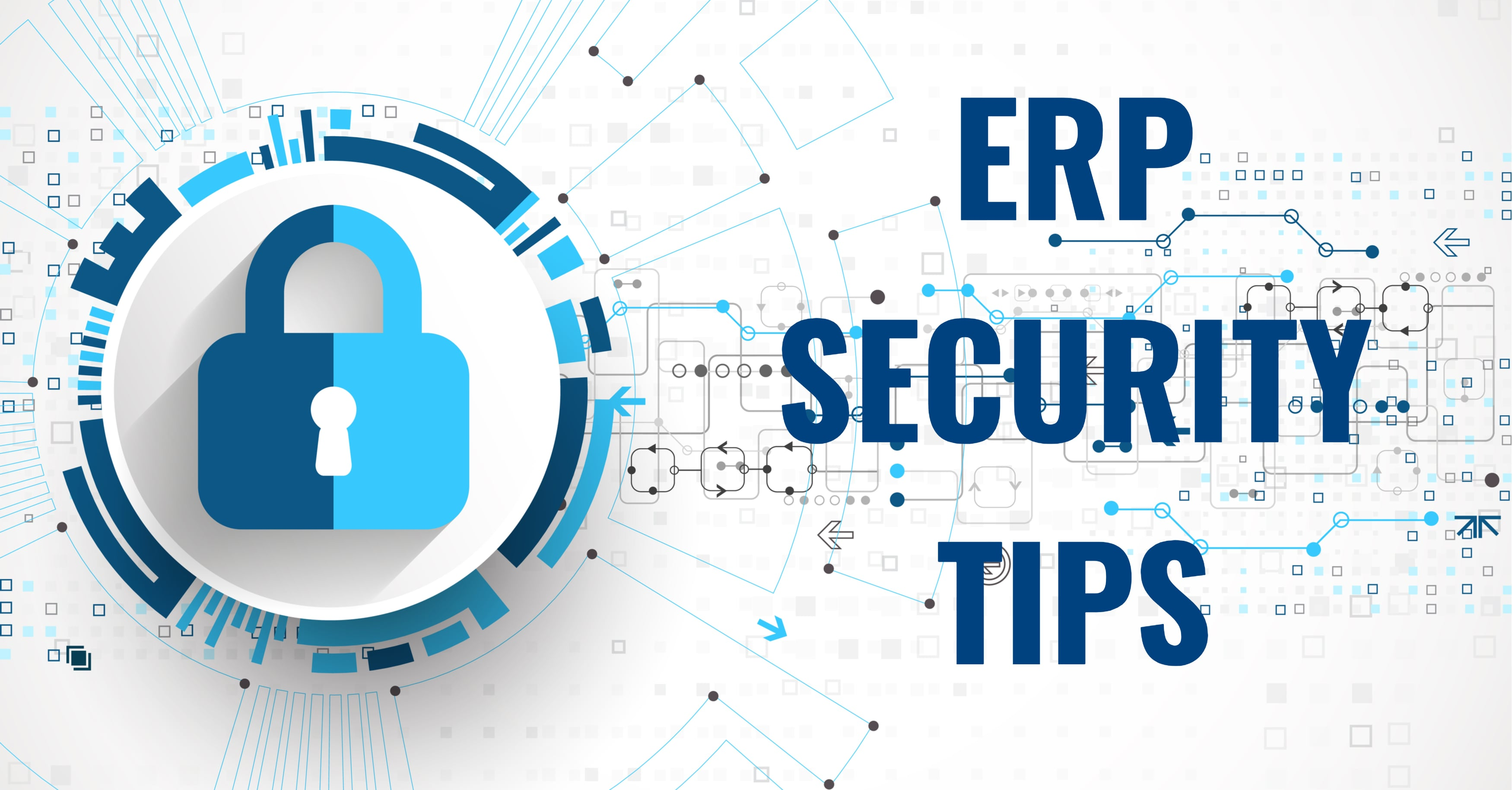 Don't Put Your ERP at Risk—Follow These Security Tips
